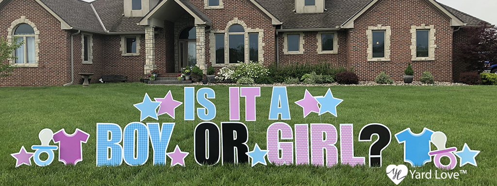 """Pastel Blue and Pink """"Is it a Boy or Girl"""" Yard Signs with baby themed signs"""